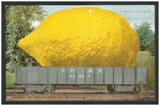 Big Lemon Postcard