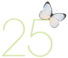 25th Anniversary Butterfly